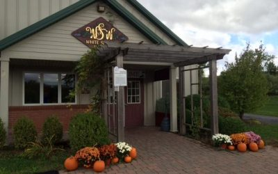 October Music at White Springs Winery