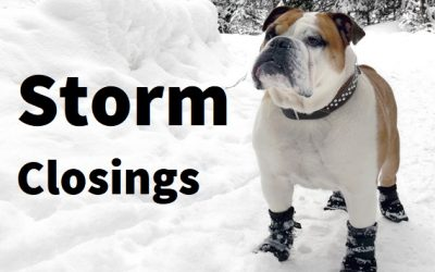Winter Storm Closings