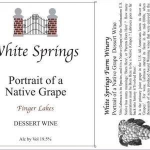 Portrait of a Native Grape